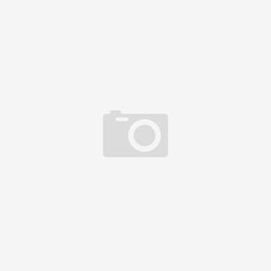Каштан конский розовый